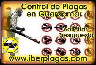 Control de plagas en Guardamar del Segura