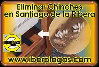 eliminar chinches de cama en Santiago de la Ribera