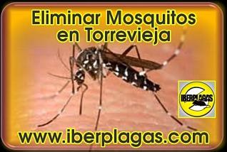 eliminar mosquitos en Torrevieja