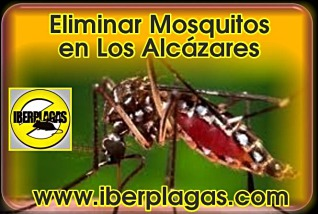 Eliminar mosquitos en Los Alcázares