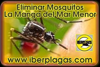Eliminar Mosquitos en La Manga del Mar Menor
