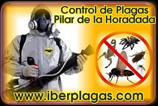 Control de Plagas en Pilar de la Horadada