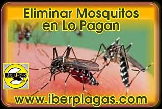 Eliminar mosquitos en Lo Pagan