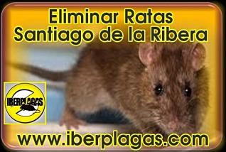eliminar ratas en Santiago de la Ribera