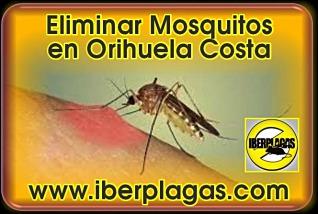 Eliminar Mosquitos en Orihuela
