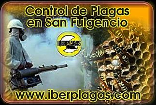 Control de plagas en San Fulgencio
