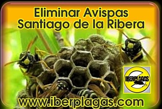 eliminar avispas en Santiago de la Ribera