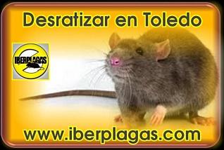 Desratizar en Toledo