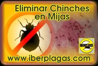 Eliminar Chinches de Cama en Mijas
