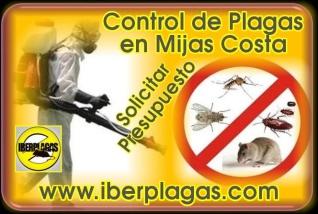 Control de plagas en Mijas Costa