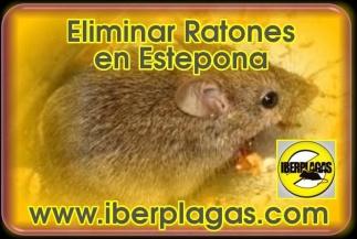 Eliminar Ratones en Estepona