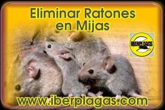 Eliminar Ratones en Mijas
