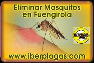 Eliminar Mosquitos en Fuengirola