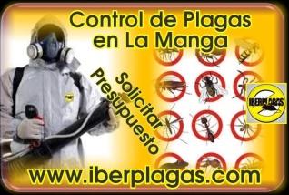 Control de plagas en La Manga del Mar Menor