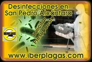 Desinfecciones en San Pedro Alcántara