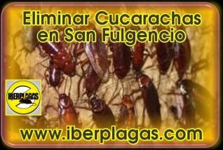 Eliminar cucarachas en San Fulgencio