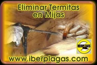 Eliminar termitas en Mijas