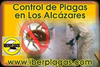Control de plagas en Los Alcázares