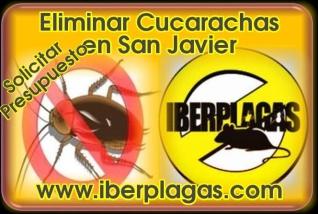 Eliminar cucarachas en San Javier