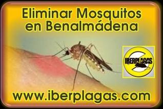 Eliminar Mosquitos en Benalmádena