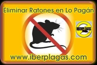 Eliminar ratones en Lo Pagán