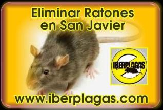 Eliminar ratones en San Javier