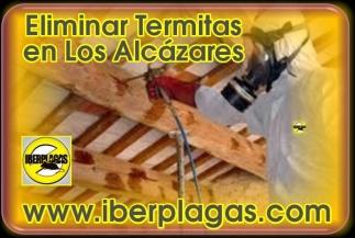 Eliminar termitas en Los Alcázares