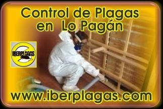 Control de plagas en Lo Pagán