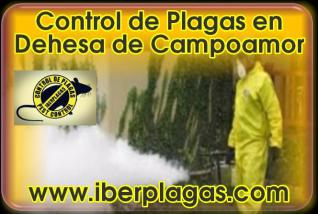 Control de Plagas en Dehesa de Campoamor