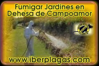 Fumigar jardines en Dehesa de Campoamor