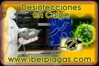Desinfecciones en Calpe