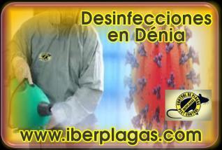Desinfecciones en Dénia