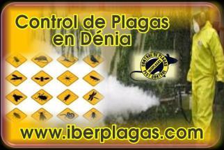 Control de plagas en Dénia
