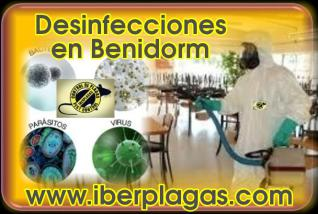 Desinfecciones en Benidorm
