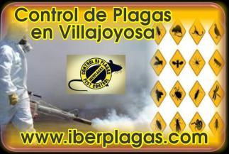 Control de Plagas en Villajoyosa