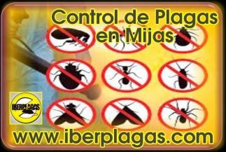 Control de Plagas en Mijas
