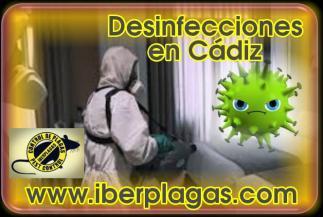 Desinfecciones en Cádiz