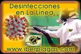 Desinfecciones en La Línea de la Concepción
