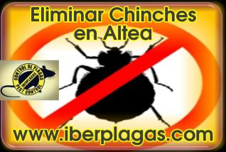 Eliminar Chinches en Altea