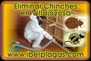 Eliminar Chinches en Villajoyosa