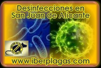 Desinfecciones en San Juan de Alicante