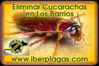 Eliminar Cucarachas en Los Barrios