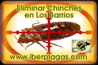 Eliminar Chinches de Cama en Los Barrios