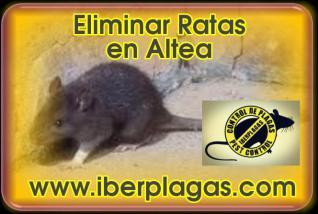 Eliminar Ratas en Altea