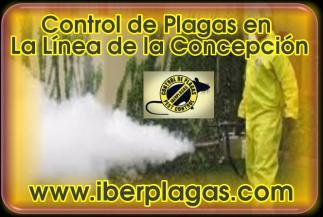 Control de Plagas en La Linea de la Concepción