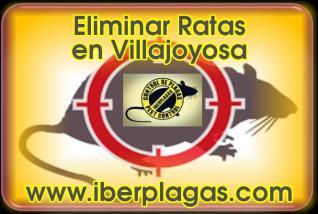 Eliminar Ratas en Villajoyosa