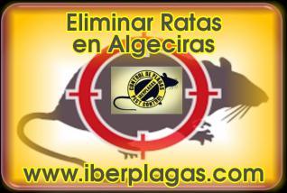 Eliminar Ratas en Algeciras