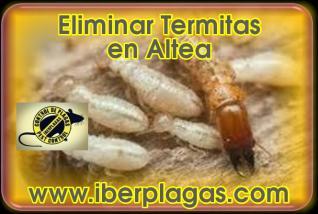 Eliminar Termitas en Altea