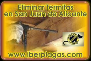 Eliminar Termitas en San Juan de Alicante