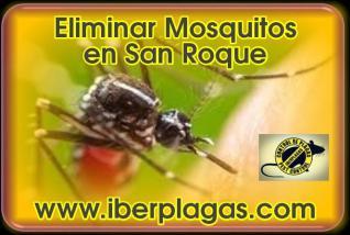 Eliminar Mosquitos en San Roque